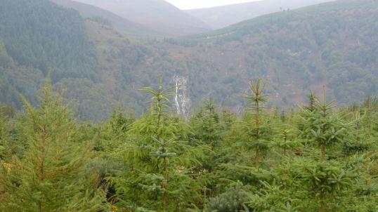 upland scenery